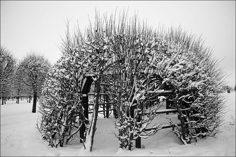 Архангельское. Январь 2012 года